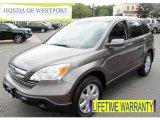 2009 Urban Titanium Metallic Honda CR-V EX-L #79371454