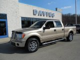 2011 Pale Adobe Metallic Ford F150 XLT SuperCrew 4x4 #79371665