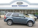 2010 Steel Blue Metallic Ford Escape XLT V6 4WD #79371634