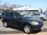 2010 Black Forest Pearl Toyota RAV4 I4 4WD #79513185