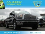 2011 Magnetic Gray Metallic Toyota Tundra TSS Double Cab #79513659
