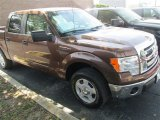 2012 Golden Bronze Metallic Ford F150 XLT SuperCrew #79569292
