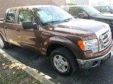 2012 Golden Bronze Metallic Ford F150 XLT SuperCrew #79569292