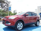 2013 Ruby Red Metallic Ford Escape SE 1.6L EcoBoost #79569387