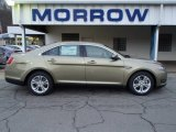2013 Ginger Ale Metallic Ford Taurus SEL #79627873