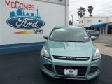 2013 Frosted Glass Metallic Ford Escape SE 1.6L EcoBoost #79627835
