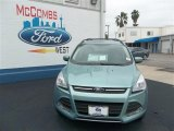 2013 Frosted Glass Metallic Ford Escape SE 1.6L EcoBoost #79627824