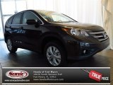 2013 Kona Coffee Metallic Honda CR-V EX AWD #79684463
