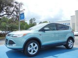 2013 Frosted Glass Metallic Ford Escape SE 1.6L EcoBoost #79684551