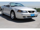 2003 Silver Metallic Ford Mustang V6 Convertible #79713766