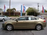 Ginger Ale Metallic Ford Fusion in 2013