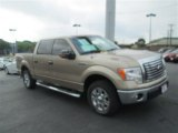 2011 Pale Adobe Metallic Ford F150 XLT SuperCrew #79712813