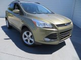 2013 Ginger Ale Metallic Ford Escape SE 1.6L EcoBoost #79713171