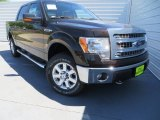 2013 Kodiak Brown Metallic Ford F150 XLT SuperCrew 4x4 #79713167