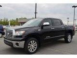 2013 Black Toyota Tundra Platinum CrewMax 4x4 #79814008