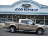 2013 Pale Adobe Metallic Ford F150 XLT SuperCrew 4x4 #79814055