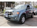 2010 Steel Blue Metallic Ford Escape XLT #79950037