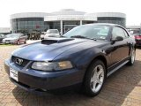 2001 True Blue Metallic Ford Mustang GT Coupe #7980878