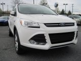 2013 White Platinum Metallic Tri-Coat Ford Escape SE 1.6L EcoBoost 4WD #79950165