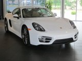2014 Porsche Cayman Standard Model Data, Info and Specs