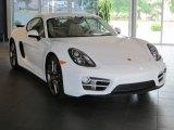 2014 Porsche Cayman Standard Model Data, Info and Specs