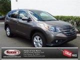 2013 Urban Titanium Metallic Honda CR-V EX #79949313