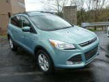 2013 Frosted Glass Metallic Ford Escape SE 2.0L EcoBoost 4WD #79949699