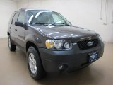 2006 Dark Shadow Grey Metallic Ford Escape XLT V6 4WD #79949270