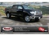 2013 Black Toyota Tundra Platinum CrewMax 4x4 #79949246