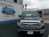 2013 Kodiak Brown Metallic Ford F150 XLT SuperCrew #80042271