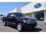 2013 Kodiak Brown Metallic Ford F150 Platinum SuperCrew 4x4 #80076011