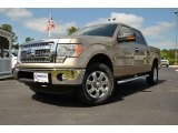 2013 Pale Adobe Metallic Ford F150 XLT SuperCrew 4x4 #80117636