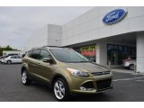 2013 Ginger Ale Metallic Ford Escape Titanium 2.0L EcoBoost #80117323