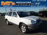 2003 Nordic White Hyundai Santa Fe GLS 4WD #80117811