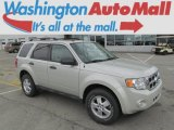 2009 Light Sage Metallic Ford Escape XLT V6 4WD #80174283