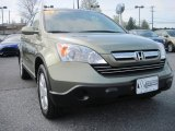 2009 Green Tea Metallic Honda CR-V EX-L 4WD #80174617