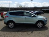 2013 Frosted Glass Metallic Ford Escape SE 1.6L EcoBoost 4WD #80225225