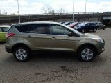 2013 Ginger Ale Metallic Ford Escape SE 1.6L EcoBoost 4WD #80225224