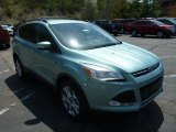 2013 Frosted Glass Metallic Ford Escape SEL 2.0L EcoBoost 4WD #80290201