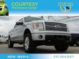 2010 Ingot Silver Metallic Ford F150 Platinum SuperCrew 4x4 #80290788