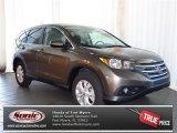 2013 Urban Titanium Metallic Honda CR-V EX #80350923