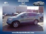 2011 Opal Sage Metallic Honda CR-V EX #80351021