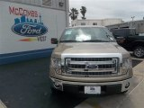 2013 Pale Adobe Metallic Ford F150 XLT SuperCrew #80383933
