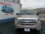 2013 Pale Adobe Metallic Ford F150 XLT SuperCrew #80383932