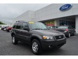 2006 Dark Shadow Grey Metallic Ford Escape Hybrid #80391748