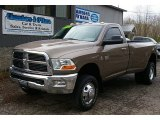 2010 Austin Tan Pearl Dodge Ram 3500 SLT Regular Cab 4x4 #80391782