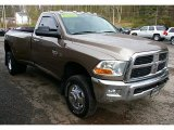 2010 Dodge Ram 3500 SLT Regular Cab 4x4 Data, Info and Specs