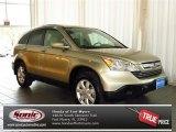 2007 Borrego Beige Metallic Honda CR-V EX-L #80425219