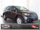 2013 Polished Metal Metallic Honda CR-V EX AWD #80425207
