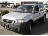 2006 Silver Metallic Ford Escape XLT V6 4WD #8020001
